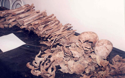 [Image: masovni-grobnici.jpg]